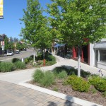 Trees Help Normal, IL Streetscape Earn Silver LEED-ND