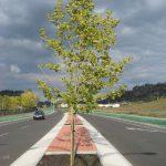 First Roadway Median Installation in Kelowna, BC