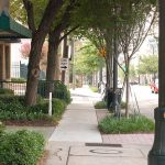 Would You Pay More To Live On A Tree-Lined Street? DeepRoot Poll