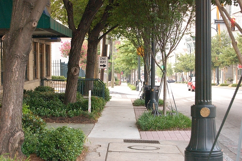 Would You Pay More To Live On A Tree Lined Street