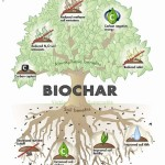 Thoughts on Bio Char Part 1 of 3: History of Bio Char