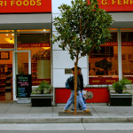 San Francisco Property Owners Likely to Assume Reponsibility for Street Tree Care