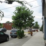 Tour a Sustainable Sidewalk at Greenbuild