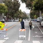 Trees Are a Tool for Safer Streets