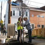Successful Community-Based Tree Planting & Care An Interview with Tree Tender Nicole Moga