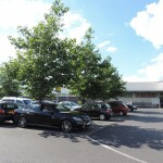 Lidl Store Car Park Puts the Environment First Silva Cell Case Study: Trees & Soil Will Manage Roof Water Runoff On-Site