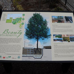 Casey Tree's Silva Cell Bioretention Garden Panel