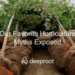 Horticultural Myths Exposed