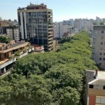 Brazil's Most Beautiful Street Bursts With Trees