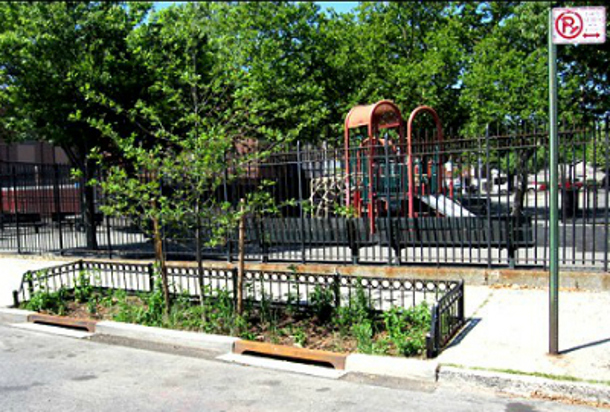 What S Missing From Nyc S Enhanced Bioswale Tree Pits