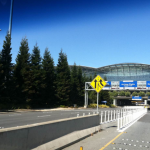 The Trees & Plants of San Francisco International Airport