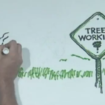 Lecture Doodle: Why Not More Trees?