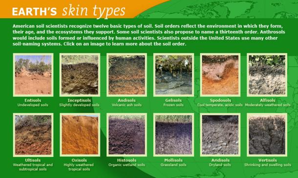 Dig it the secrets of soil deeproot blog for Utility of soil