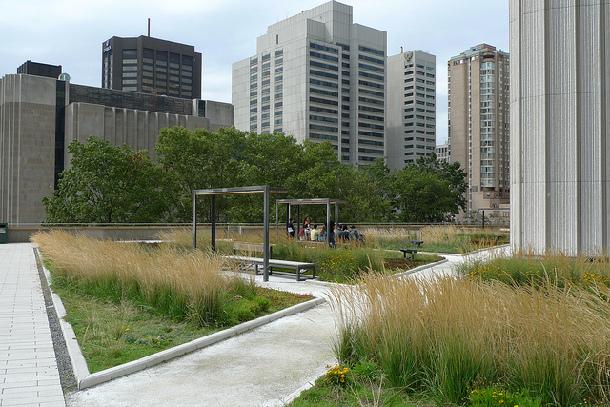 Green roof - Toronto