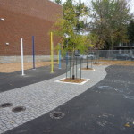 The Greening of St. Clement Schoolyard<em><br><i>Case Study: School Playground in Montreal, Quebec</br></em></i>