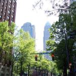 Aren't Urban Trees A Public Health Issue?
