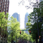 Charlotte, NC Trees In Suspended Pavement Look Great 25 Years Later