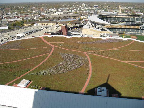 Target Center green roof