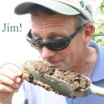 "Ask Jim: ""In stormwater applications, do Silva Cells require soil in the planting bed to be set low?"""