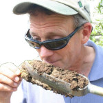 """Ask Jim: """"Might the trunk flare grow so large that it alters the soil hydrology?"""""""