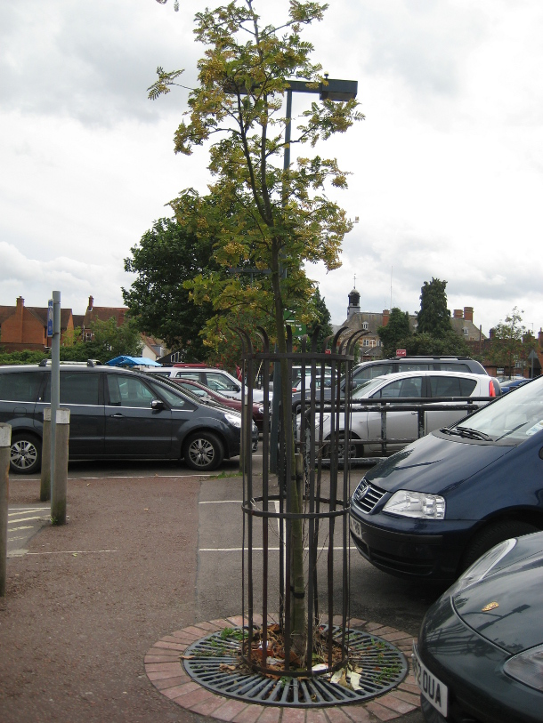 Waitrose Henley Car Park
