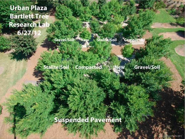 Bartlett Plaza-2012