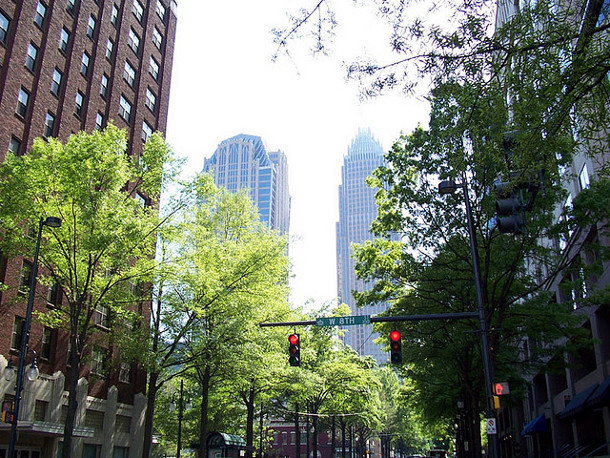 Street trees in Charlotte, NC. Flickr credit: Willamor media