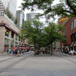 What's Missing From the Top 10 Cities for Urban Trees