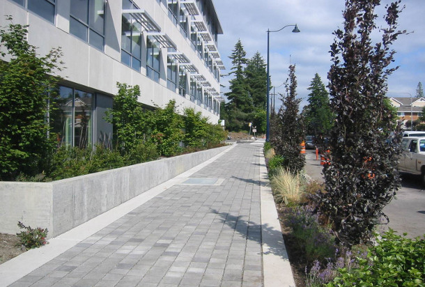 Permeable pavers were used over Silva Cells on a project along Aurora Avenue in Shoreline, WA. Image courtesy of Otak.