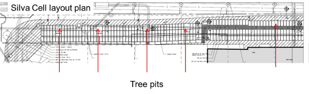 Silva Cell layout plan with tree pits