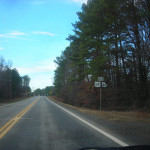 Should Georgia's Highways Be Free of Trees?