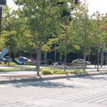 Frenemies: Landscape Architects & Engineers