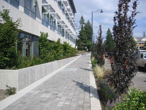 WA Dept. of Ecology - Aurora Avenue Silva Cell installation