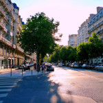History of Street Trees in Paris <em><i><br>Paris the minute to Paris the modest</i></br></em>