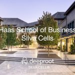 Haas School of Business Courtyard Renovation Silva Cell Case Study