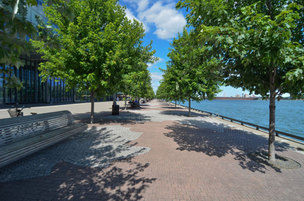 Water's Edge Promenade trees planted in Silva Cells. Photo from June 2013 (three growing seasons). Image: Claude Cormier + Associes.
