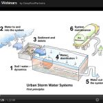 Webinar: Using Trees and Soils to Manage Urban Stormwater