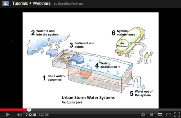 Webinar - Using trees and soils to manage stormwater