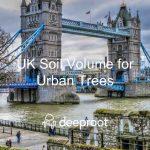 UK Soil Volume Status for Urban Trees