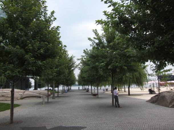 Sugar Beach trees in 2013