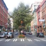 Seattle's Urban Forest Stewardship Plan: 3 Action Items Worth Noting