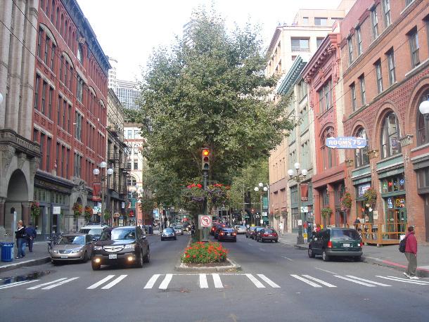 Seattle S Urban Forest Stewardship Plan 3 Action Items