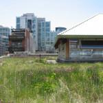 Toronto Expands Green Roof Incentive Program