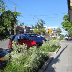 Bainbridge Island's Redone Downtown Corridor <em><br><i>Silva Cell Case Study</em></br></i>