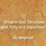 What is Soil Structure and Why is it Important?