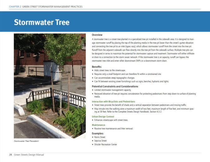 Philadelphia Stormwater Tree - 1