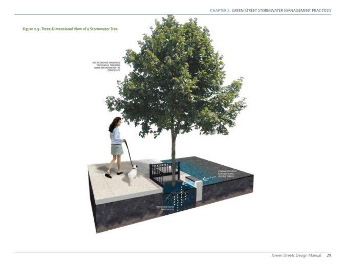 Philadelphia Stormwater Tree - 2