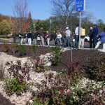 Long-Term Use of Bioretention for Heavy Metals Removal