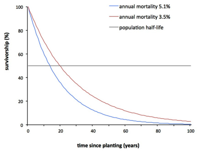 Survivorship curves with population half-life: Survivorship curves for street trees when annual mortality is constant at 5.1 or 3.5%, as estimated from a meta-analysis of previous studies, adapted from Roman and Scatena (2011). These curves depict exponential decay in cumulative survivorship. The population half-life is the time at which half the population has died (survivorship = 50%). Note that survivorship curves are often drawn in the demographic literature with log-transformation, but that this graph is not log-transformed for ease of interpretation. Courtesy of Lara Roman.