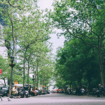 Treating Trees as <i>Actual</i> Infrastructure